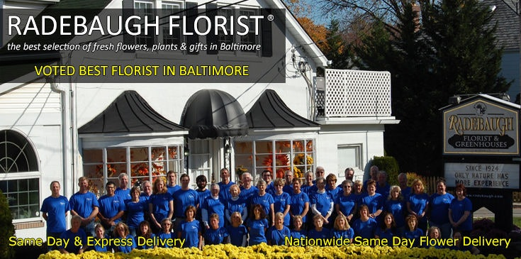 Radebaugh Florist is a Baltimore Maryland floral design firm. We were voted Best Florist in Baltimore for 2017.