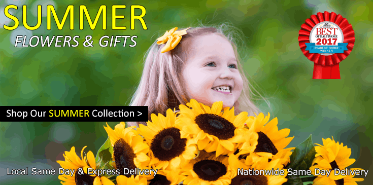 Shop Radebaugh Florist for the best selection of Summer themed flowers, plants and gifts in Baltimore, Maryland.