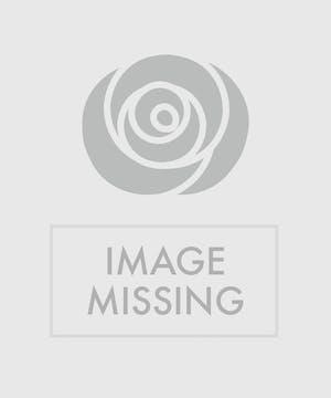 Purple Alstroemeria Boutonniere
