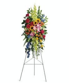 A gorgeous spray of vibrant blooms to lift the spirits.