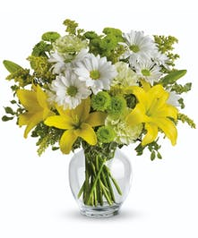 Bright and beautiful blooms for any occasion