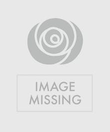 A lovely casket bouquet of white roses enclosed in a heart of red carnations.