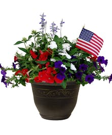 Combo Tub of Assorted Red, White and Blue Annuals