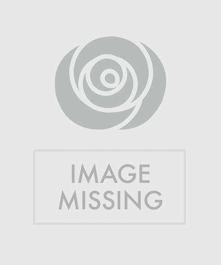 Baltimore Flowers