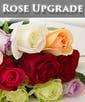 w/ Rose Upgrade